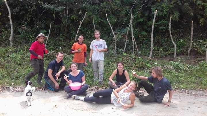 Costa Rica Organic Farm volunteer experience